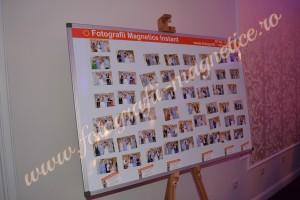Fotografii magnetice (4)
